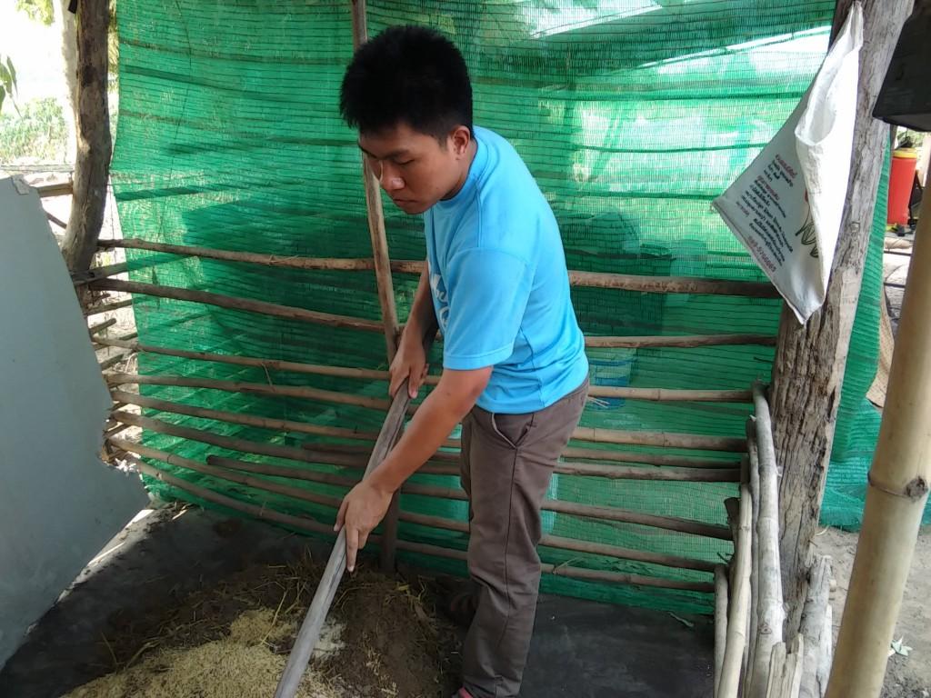 การทำปุ๋ยหมักมูลวัว