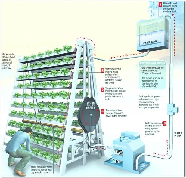Vertical_Farming_VF_illustration