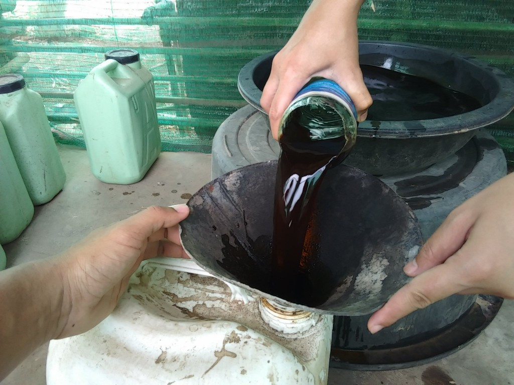 วิธีทำน้ำหมักไล่แมลง